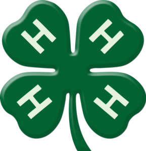 4H_Clover_Dark_Green