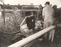 Staff working the pumps 1940s