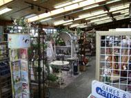 Inside co-op seasonal items area