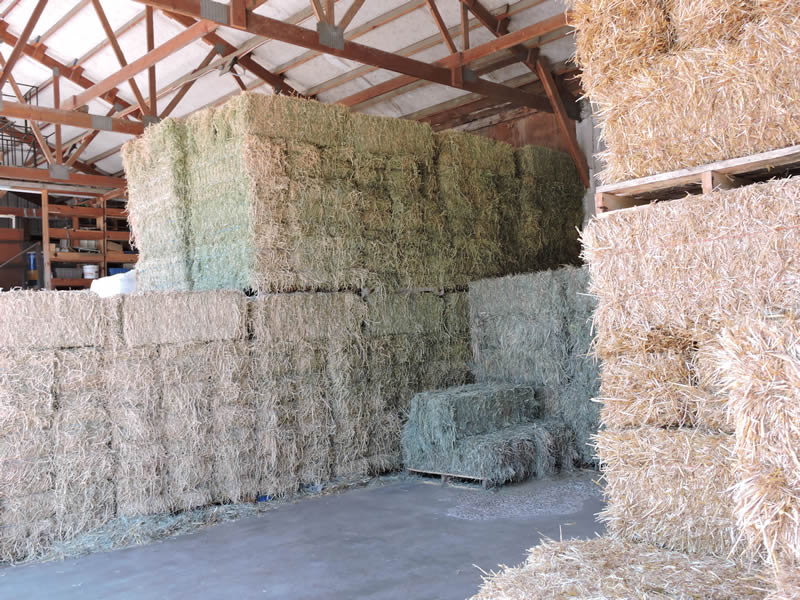 The Clallam Co-Op stocking hay and straw